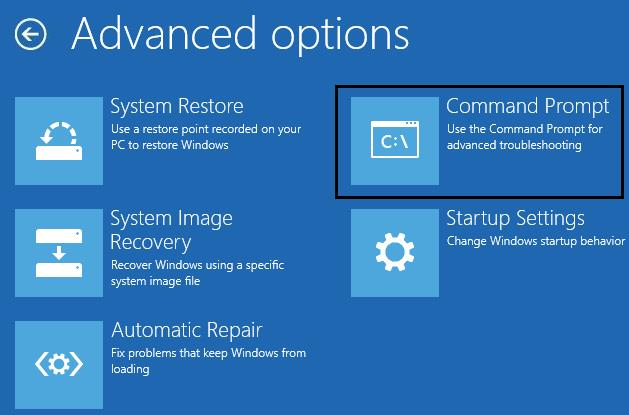 Advanced options -> Command Prompt